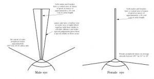 Peripheral vision image