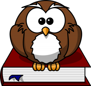 lemmling-Cartoon-owl-sitting-on-a-book